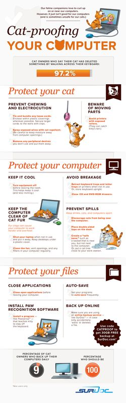 Cat Proof Your Computer - Click to enlarge