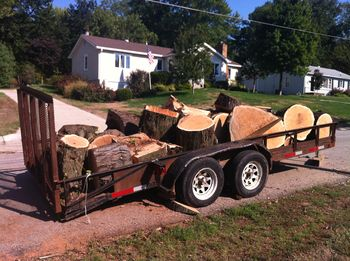 Nothing but logs
