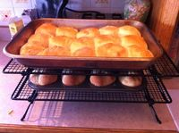 A big batch of Aunt Edith's Dinner Rolls, both cloverleaf and solid varieties.