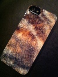 iPhone 5 case from Uncommon