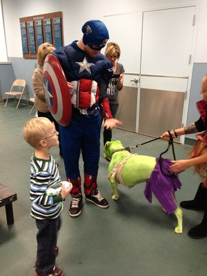 Human and dog Avengers meet
