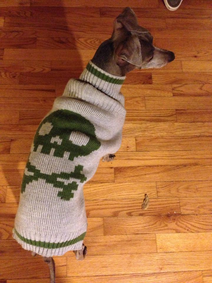 Toby_sweater